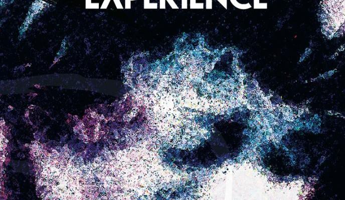 Quintorigo - Quintorigo Experience