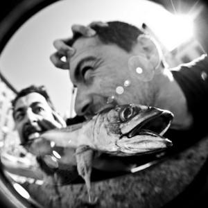 VIDEO LIVE: I Gatti Mézzi @ Circolo Arci Magnolia [Segrate, MI] – 30/6/2013