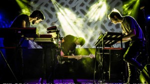 ZIF 2014 FB Main Stage i Cani -21