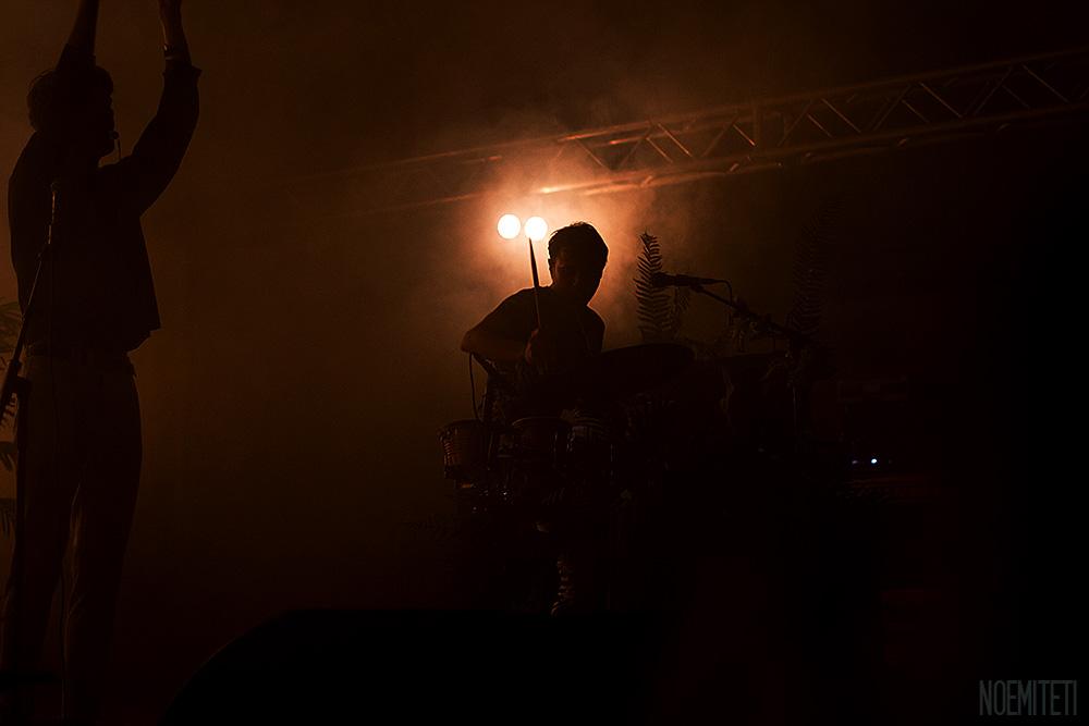 M+A nella nebbia