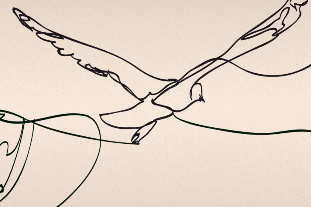 Gratitude by Martha Ter Horst