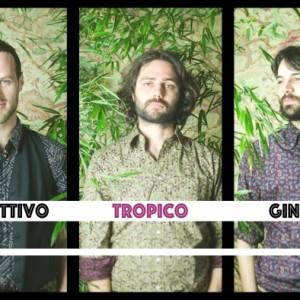 RECENSIONE DI COLLETTIVO GINSBERG – TROPICO – L' AMOR MIO NON MUORE – IRMA RECORDS -2016
