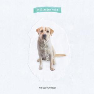 nicolo-carnesi-bellissima-noia-download-696x696
